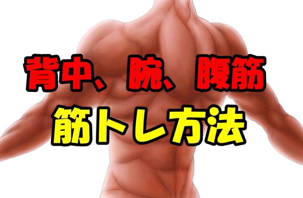 背中、腹筋、腕の筋トレ方法!